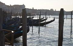 backlit gondolas