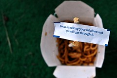 Intuition. (ElizabethGrace) Tags: food chicken sticks focus chinese lo mein chop noodles intuition