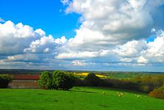The View from the Car Park at Great Dixter (antonychammond) Tags: uk trees england sky green yellow landscape britain eastsussex cluds gmt potofgold christopherlloyd greatdixter blueribbonwinner firsttheearth winnr astunningmoment grouptripod virtualjourney cloudslightningstorms