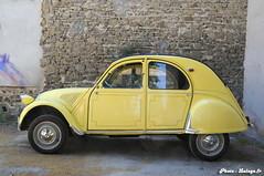 Citroen 2CV - Panama Yellow 1960 - 04 (Lalogo.fr) Tags: lyon 69 citroen2cv 1960 rhônealpes brignais lalogothequecom lalogofr reportagesphotosautomobiles ac307 jaunepanama panamayellow