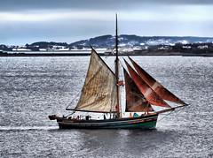 Sailing on! (larigan.) Tags: sailboat sailing yacht valdery larigan valderyfjord phamilton betterthangood damniwishidtakenthat tanbarksails