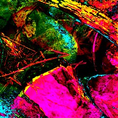 Rock Study (_kimmg_) Tags: park pink blue red orange abstract color colour green grass garden rainbow rocks colorful neon bright vivid psychedelic sandbox picnik bold hotpink prismatic colourmania kimmarieg