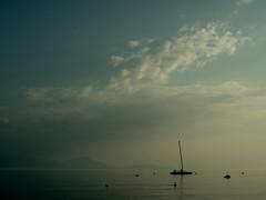 Lake Evening (Fispace) Tags: blue lake clouds sailboat switzerland catamaran leman vaud saintsulpice raceboat patrimonium genevalunch