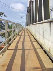 Jembatan landak