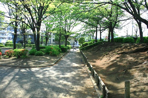 町田樹 画像14