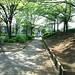 町田樹 画像67
