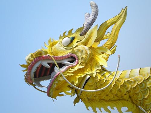 Vietnam Dragon: Travel Log
