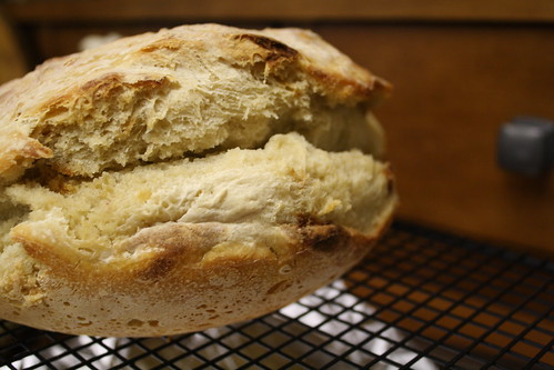 20090426_sourdough_0011