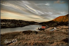 Nestled In The Cove (Spence D) Tags: ice water newfoundland boat cove herringneck
