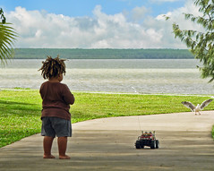 Reggae Child Tormenting a Seagull (Jim Boud) Tags: ocean boy car dreadlocks truck canon control seagull australia shore chase remote cairns jimboud jrbxom jamesboudphotoart gettyvacation2010