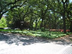 Telfair Square
