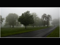 Long Road - Cool Misty Scene - Camperdown Park - Dundee Scotland (Magdalen Green Photography) Tags: misty scotland cool dundee scottish tayside longroad camperdownpark mistytrees dsc8763 iaingordon coolmistyscene