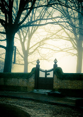 Fog Revisited (jennifer glass) Tags: trees fog gate capital colonialwilliamsburg cw lightroom explored