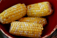 Grilled Corn on the Cob IMG_7602
