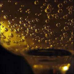 A Toast! To all my flickr friends. Pick a bubble!