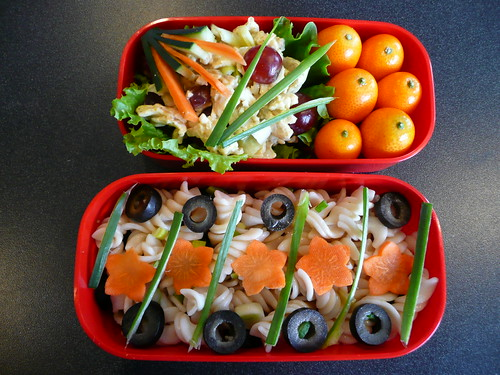 "Box 1:  Mock curried ""chicken"" salad, kumquats. (cucumber, carrot, green onion, lettuce garnishes).  Box 2:  Pasta salad with black olives, green onion and vinaigrette.  (carrot and green onion garnishes)  360 Calories."