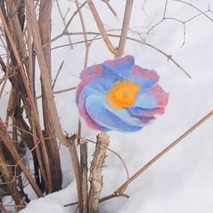 Felted flower pin (ingermaaike2) Tags: pink blue flower wool felted norge pin felting felt merino yelow norsk wetfelted husflid