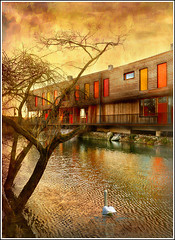 Orange (Jean-Michel Priaux) Tags: wood windows sunset sky orange sunlight house france color colour tree art texture window nature water architecture illustration photoshop river painting landscape gold swan construction nikon eau warm paint graphic perspective dream picture peinture dreaming reflet ill reflect alsace build paysage soe hdr anotherworld warmtones ried d90 priaux abigfave aplusphoto theunforgettablepictures goldstaraward muttersholtz ehnwihr vanagram vosplusbellesphotos maisondelanature