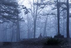 graveyard 138 (tammye*) Tags: trees game cemetery grave graveyard stones headstone foggy headstones graves hero superhero winner arkansas yourock tcf pinehill thechallengefactory yourock1stplace ultraherowinner ultraherochallenge ispywinner