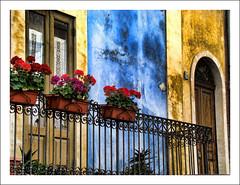 Un balcone fiorito ad Acicastello (Andrea Rapisarda) Tags: flowers italy texture colors azul geotagged italia balcony sicily fiori azzurro sicilia balcone acicastello tonemapped colorphotoaward aplusphoto rapis60 andrearapisarda paololivornosfriends capturethefinest siciliainhdr geo:lat=37555194 geo:lon=15148396