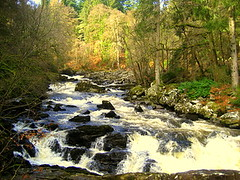 Hermitage waters (Bookbinder's Kid) Tags: scotland perthshire dunkeld