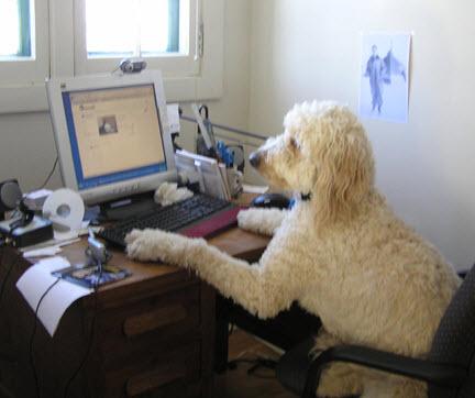 Otis At Work