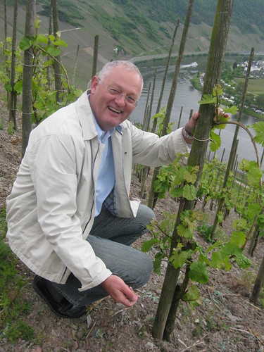 The Mosel: A view from the vineyard