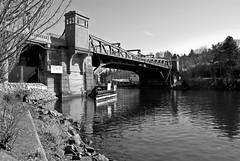Fremont Bridge (warren.talbot) Tags: birdwatching eagles laconner snowgeese