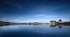 Oasis (Gilad Benari) Tags: blue sky panorama cold reflection art water clouds palms print poster landscape israel skies  symmetry oasis  eilat gilad nwn         benari