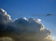 Clouds#68_Copy (Single-Tooth Productions) Tags: sunset cloud nature bluesky sunlit eveningsky stormcloud approachingstorm sunlitcloud canonpowershotsd880is