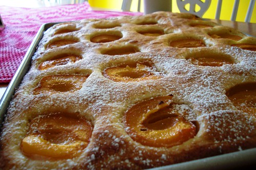 first apricot cake of the year