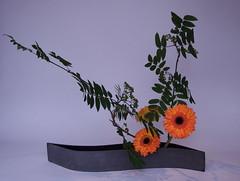 Sigrid's Ikebana 10 June 2009 (l1nda1) Tags: flower ikebana floralart sogetsu japaneseflowerarrangement
