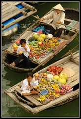 Floating Fruits (earthmagnified) Tags: asia southeastasia unesco worldheritagesite vietnam limestone floatingmarket halongbay chinesejunk 1000islands fruitseller globetrekker karsts vagabonding halongcity vegetableseller conicalhat gulfoftonkin worldtraveller floatingvillages descendingdragon floatingvendor