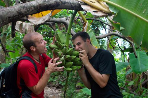 Parque Nacional Corcovado-084
