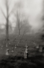 A foggy day in the cemetery 7 (Otto K.) Tags: blur tree film graveyard fog tombstone kodaktrix canoneos3 oaklandcemetery plasticlens kentmere ottok lensbabycomposer