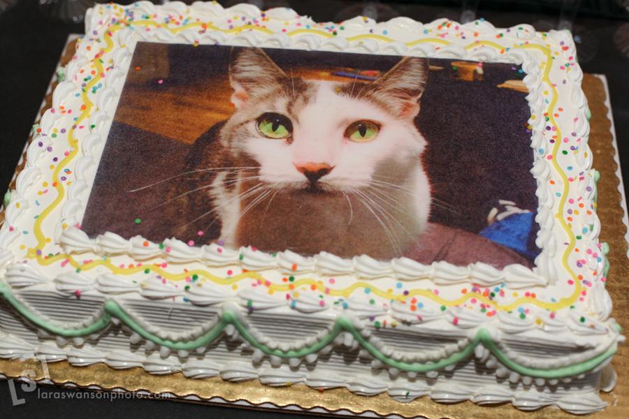 face cake