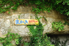 DSC_0057 (pottiri12) Tags: sendai matsushima
