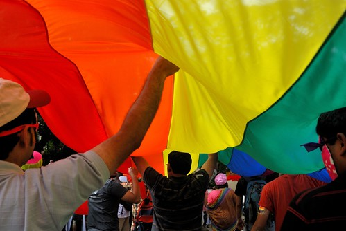 The court has ruled that homosexual intercourse between consenting adults is ...