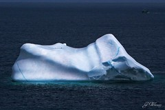 Iceberg, Ferryland, Newfoundland (gwhiteway) Tags: canada newfoundland boat iceberg ferryland