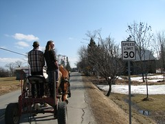 """Sterling Draft Horses 2 • <a style=""""font-size:0.8em;"""" href=""""https://www.flickr.com/photos/7973252@N08/3771507777/"""" target=""""_blank"""">View on Flickr</a>"""