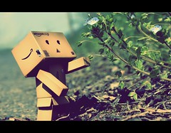 Danbo want's some Spring too (donchris!) Tags: flower primavera fleur japan toy japan