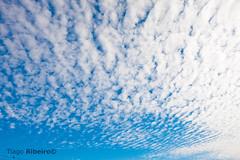 Cirrus (Tiago Ribeiro (Palito)) Tags: blue sky azul clouds nuvem ceu cirrus ensolarado