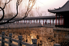 Daming Lake, Shandong, China      (Lao Wu Zei) Tags: china travel sunrise photo favourite  shandong   daminglake