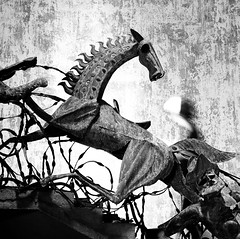Ghosts of the past. (ndnbrunei) Tags: blackandwhite bw sculpture texture 120 6x6 tlr film rollei mediumformat square kodak bn mf srilanka galle rolleicord portugese classicblackwhite autaut rolleigallery ndnbrunei tmy2 kodak400tmy2 50yearoldcamera ilovemyrolleicord