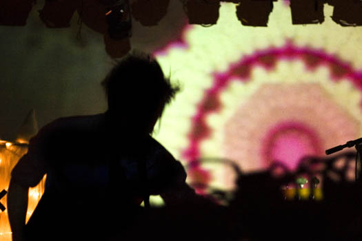 octopus project 024