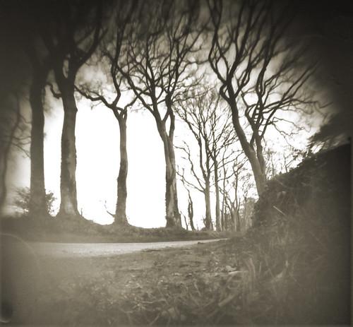 Hunterston castle avenue pinhole image