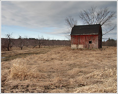 Woodmont Orchard (Dave Delay) Tags: barn spring newhampshire nh hollisnh woodmontorchard