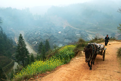 Guizhou village (morten almqvist) Tags: china sigma guizhou 1530mm sd14