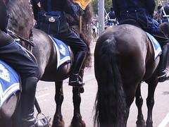 Prinsjesdag 2008-1 136 (nico1959) Tags: spurs boots mountedpolice prinsjesdag politielaars