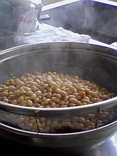 cooked soy beans